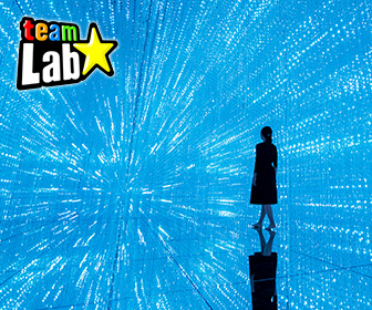 澳門 TeamLab 超自然空間