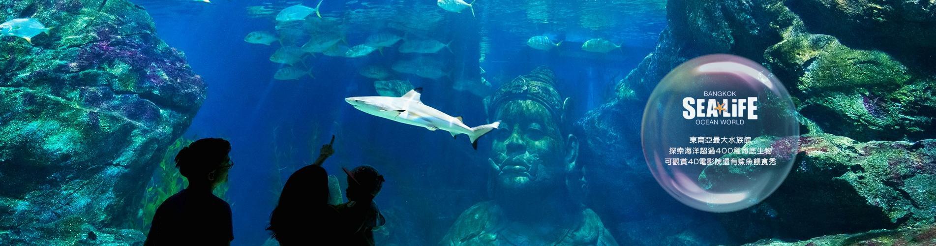 泰國曼谷暹羅海洋世界門票
